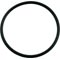 "O-Ring, 2"" Union Assy, O-43 89-105-1509"