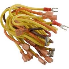 Wire Harness, Zodiac Laars Lite 47-295-1469